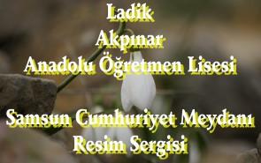 AKPINAR RESİM SERGİSİ SAMSUN 31.5.2013